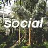 social musique