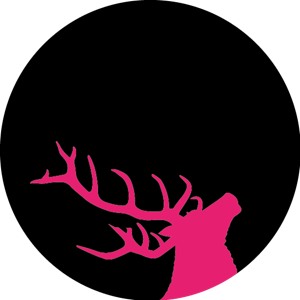 Profile picture for Broken Antler