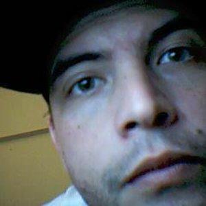 Profile picture for Aruana Cavalleiro