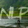 Norsk laksefilm prod