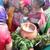 Vedic People