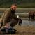 Wildlife Media