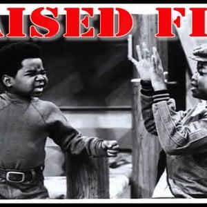 Profile picture for Raised Fist Propaganda