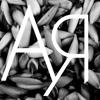 Araucaria Cine