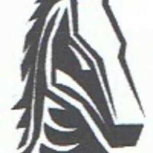 Profile picture for Leon Schatz