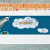 Anacrus