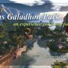 Calas Galadhon