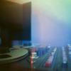 lovebird recording