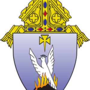 Diocese of phoenix