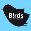 Birds communication