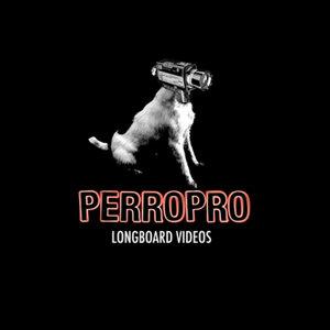 Profile picture for PERROPRO