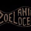 Žoel Animocean