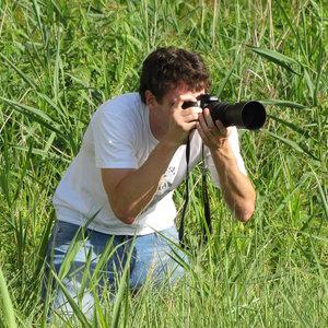 Profile picture for Daniel Pellow