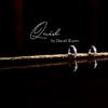 Quid by David Torres