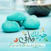 Heba Mohamed Elsisi