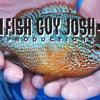 Fish Guy Josh