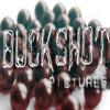 Buckshot Pictures
