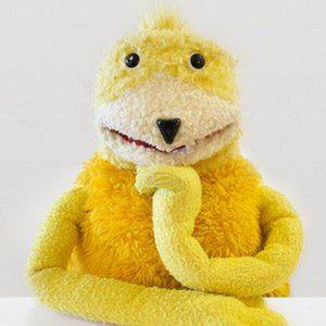 Profile picture for Raptor