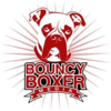 Bouncy Boxer Media LLC