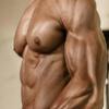 MuscleDom