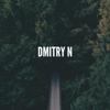 Dmitry N