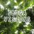 Iboga Visions