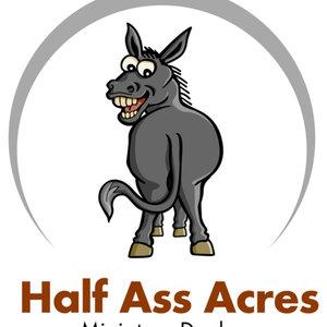 To half ass