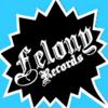 Felony Records