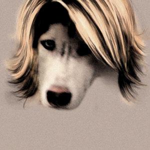 Profile picture for Gido