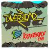 DIVERSIDAD EXPERIENCE
