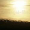 stengel-film