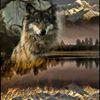 wolflondon