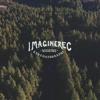 ImagineRec