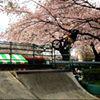 Masahiro Nishino