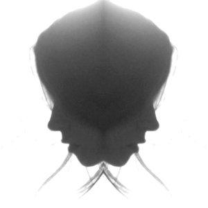 Profile picture for jayme elizabeth