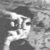Monzo8959