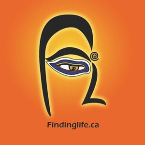 Profile picture for Findinglife.ca
