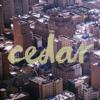 Cedar Film CO.