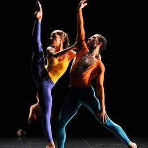 Profile picture for Spectrum Dance Theater