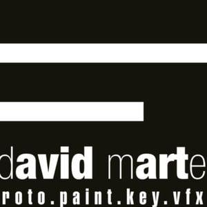 Profile picture for david marte