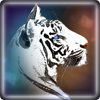 christine hermsmeyer