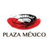 La Plaza México
