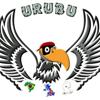 URUBU Parapente (Mike Ehweiner)