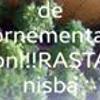 Natascha Nocomment