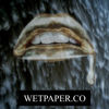 Wetpaper.co