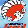 Parapente Brasil