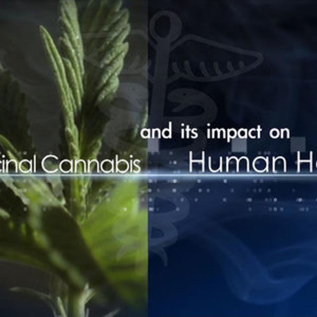 apa style per d medical cannabis