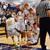 Whitman Basketball