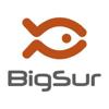 Big Sur, immagini e visioni