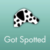 GOTSPOTTED FILMS, Alex Hafner